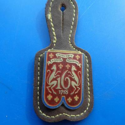 16 regiment de dragons 1718 nomen lavdesque 2