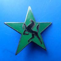 5 division blindee escadron d eclairage divisionnaire