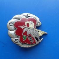 9 regiment de chasseurs parachutitses ccs
